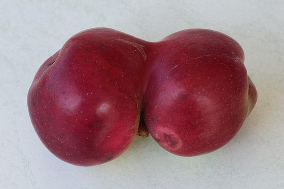 Siamesische Äpfel