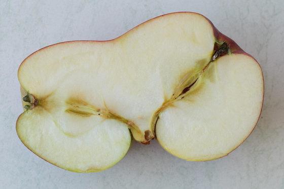 Halbierte, Zusammengewachsene Äpfel